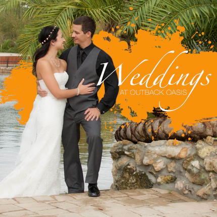 Weddings at Outback Oasis