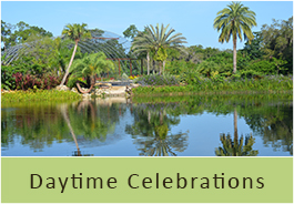 daytime-celebrations
